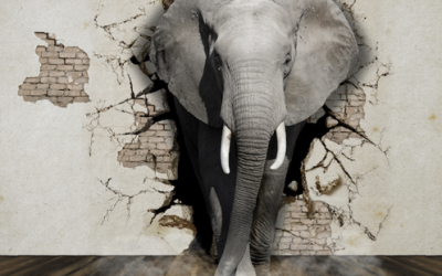 Flying Elephants and Travel Emissions – Part 3